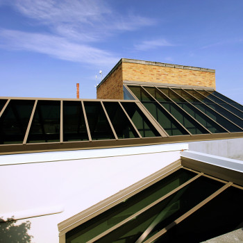 Custom Ridge Single Slope Skylight